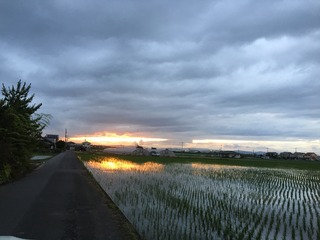 夕焼け2020.jpg